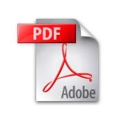 Vai al testo in formato pdf